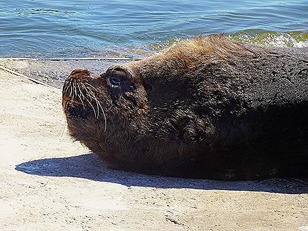 45. Punta del Este, Uruguay