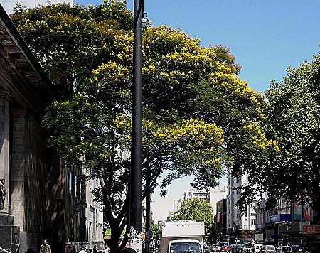 72. Montevideo, Uruguay_ShiftN