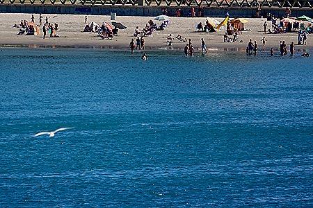 8. Puerto Madryn