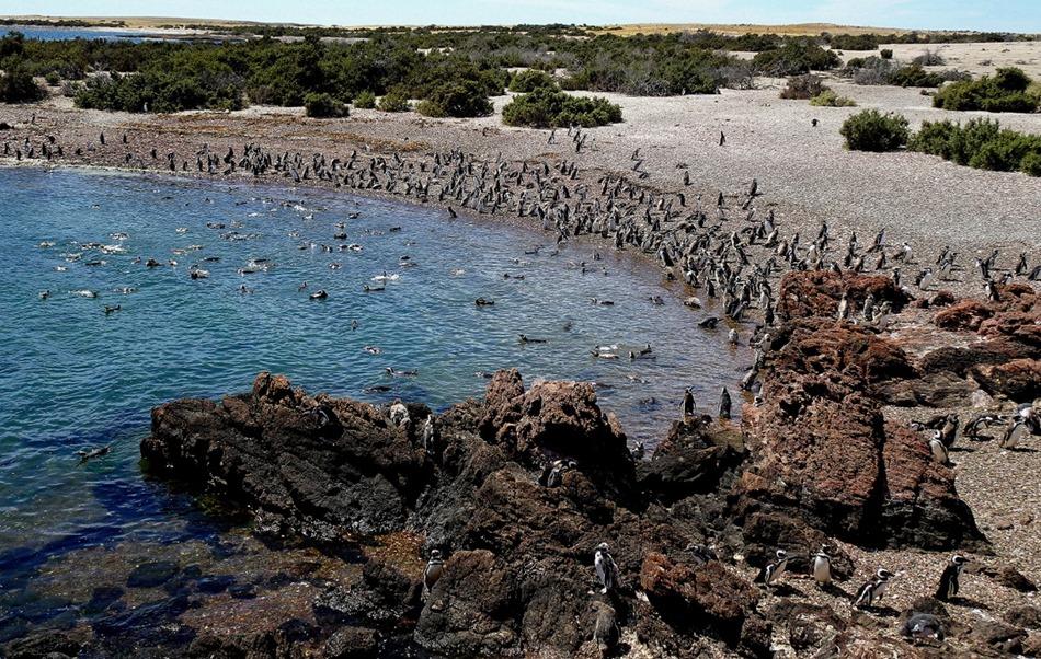 93. Puerto Madryn