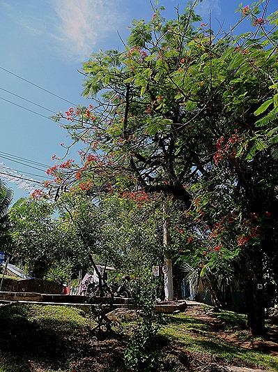 9. Ilhabella, Brazil