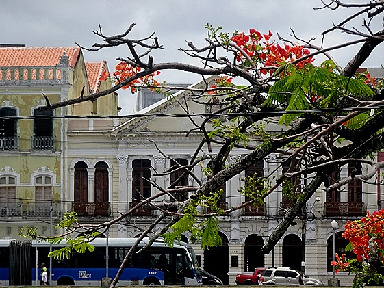 141. Recife & Olinda, Brazil