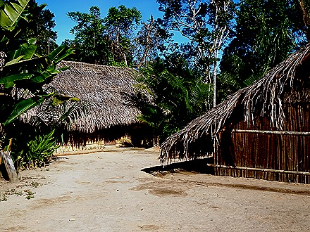 195. Manaus, Brazil (Day 1)