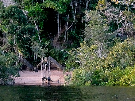 245. Manaus, Brazil (Day 1)
