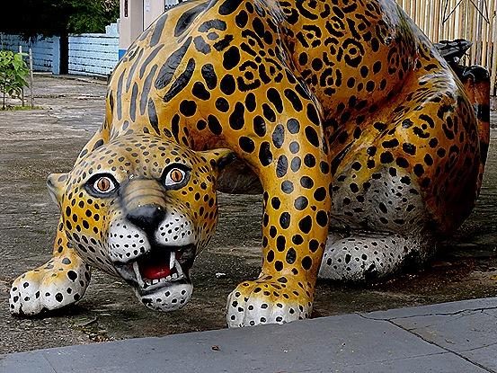 26. Parentins, Brazil