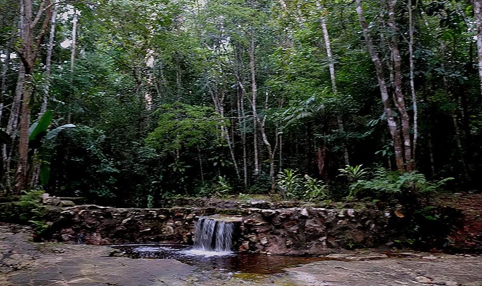 35. Manaus, Brazil (Day 2)