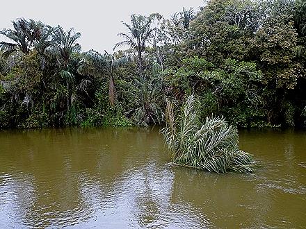 69. Santarem, Brazil