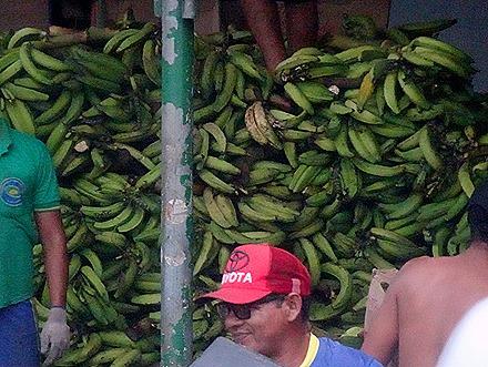 9. Manaus, Brazil (Day 1)