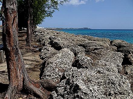 145. Bridgetown, Barbados