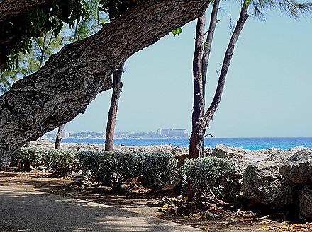 146. Bridgetown, Barbados