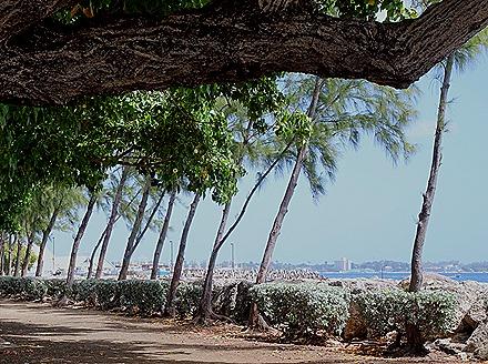 149. Bridgetown, Barbados