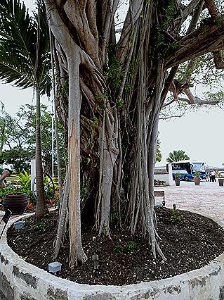 86. Bridgetown, Barbados
