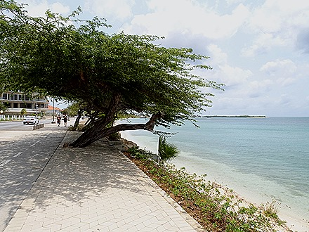 46. Orangestadt, Aruba